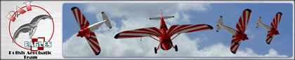 Polish Aerobatic Team Eagles